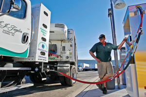 Market for HD Natural Gas Trucks Stalls