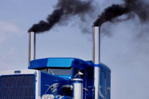 WWF to Help Freight Companies Reduce Emissions